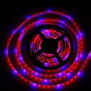 36W LED rasvjeta za uzgoj biljaka 300 SMD 5050 lm Crveno / Plavo Vodootporno DC 12 V 2 kom.