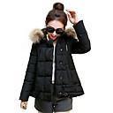 Dámské Dámská bunda / Zimní bunda / Vrchní část oděvu Outdoor a turistika / Sněhové sporty Voděodolný / Prodyšné / ZahřívacíJaro / Podzim