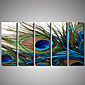 5 Panels Animal painting Peacock Picture Print on Canvas Unframed