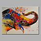 Ručno oslikana Životinja ulja na platnu,Moderna Jedna ploha Platno Hang oslikana uljanim bojama For Početna Dekoracija